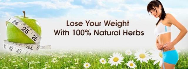 Secrets Of Popular Weight Loss Herbs
