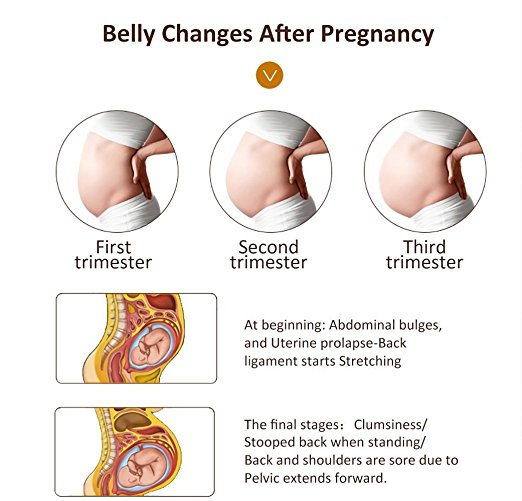 Belly Changes After Pregnancy