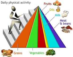 the ways to stop the epidemic of obesity in the united states How the government can curb obesity  the current subsidies prohibit farmers in the united states from planting fruits and vegetables and of course, this greatly affects the price of fruits.