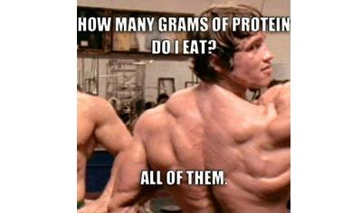 HCG Diet Plans Protein Weight Loss Aid